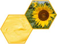 Подсолнечниковый мёд