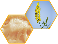 Донниковый мёд
