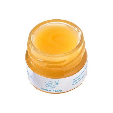 Мёд из лугового разнотравья №7, 40г (25мл) фото 2