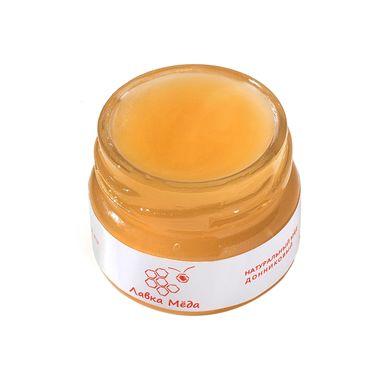 Донниковый мёд №9, 40г (25мл) фото 2